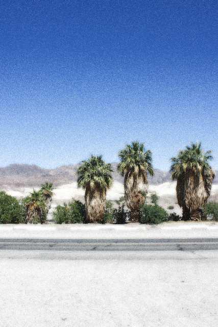 Wüste Große Webansicht